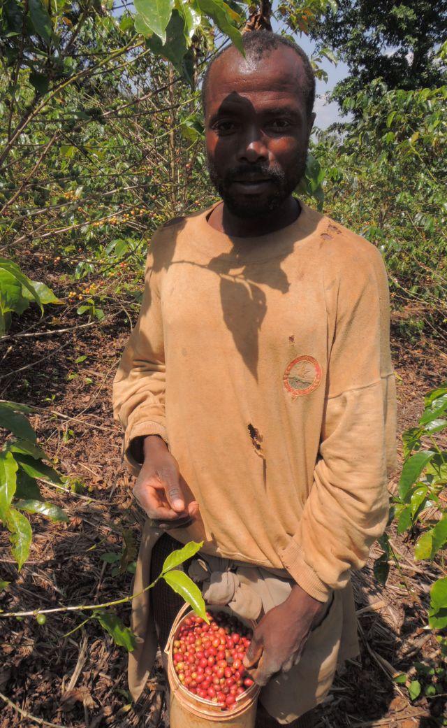 ルワンダ ドメーヌアバトゥンジ農園 500g