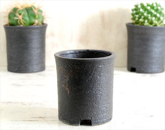 信楽焼 寸胴鉢 3号 陶器鉢 植木鉢 おしゃれ サボテン 塊根植物 コーデックス アガベ 多肉植物に