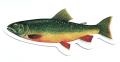 ONLY NY ''fish'' ステッカー 226
