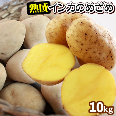 【北海道産じゃがいも 熟成インカのめざめ10kg】 送料無料 ジャガイモ 半年以上も熟成させ、甘さを引き出しました [当店他商品との同梱不可]