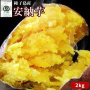 〈送料無料〉種子島産 【安納芋 2kg】(大・中・小混合サイズ6~10本) 蜜芋  [※他商品との同梱不可][※常温便]