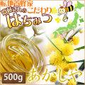 【純粋はちみつ あかしや500g】一番くせがなくて食べやすいハチミツです。パンに、ホットケーキに、紅茶に。何にでもお使い頂けます♪ [※SP]