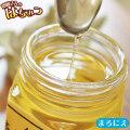【純粋はちみつ まろにえ500g】橡(トチ)の木に咲く花の、甘味の強い蜜。気品漂う風味とさっぱりとした甘さ。メープルシロップの代わりとしても♪ [※SP]