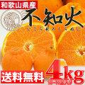 ≪送料無料≫ デコポンと同品種のさっぱりジューシー♪【和歌山県産 不知火(しらぬい) 4kg (10~16玉)】 みかん 蜜柑 柑橘 オレンジ