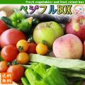 野菜 フルーツ 詰め合わせ セット 【農家お任せ旬のベジフルBOX】≪送料無料≫