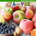 フルーツ 詰め合わせ セット 【農家お任せ旬のフルーツBOX】≪送料無料≫