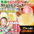青森 りんごジュース 100% ストレート果汁 160万本突破 1000ml×15本メガセット 【林檎園 K-15】 送料無料 年間16万本完売★ リンゴ ジュース 葉とらずりんご 使用 リンゴジュース ストレート りんご