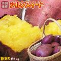 送料無料 【茨城県産さつまいも シルクスイート 訳あり 約5kg】(2S~2L) [※他商品との同梱不可][※常温便]