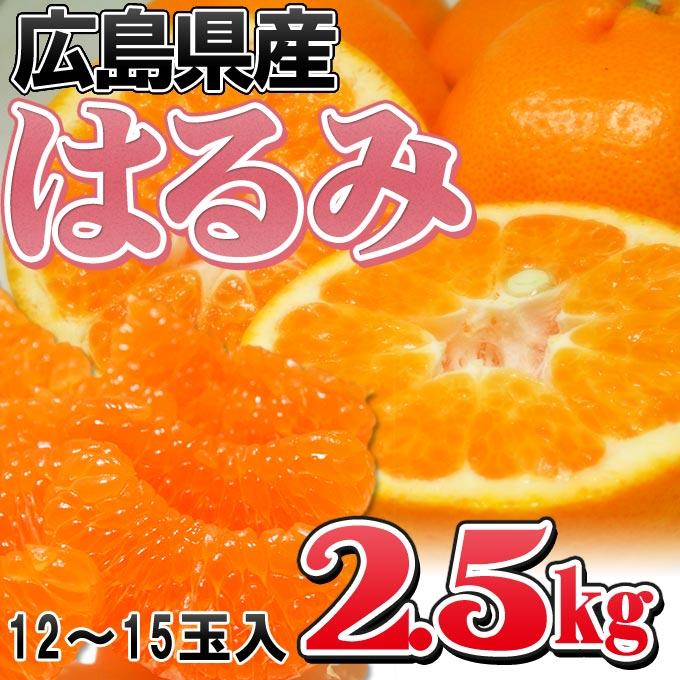 ≪送料無料≫ ぷちぷち食感が病み付き♪ 旬が短い希少みかん  【広島県産はるみ 2.5kg(12-15玉前後)】  ミカン 柑橘 オレンジ