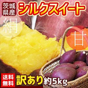 送料無料 【茨城県産さつまいも シルクスイート 訳あり 約5kg】(2S〜2L) [※他商品との同梱不可][※常温便]