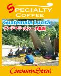 グァテマラコーヒー ルシータ農園