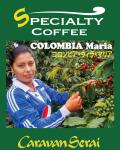 ウィラ・マリア農園コーヒー豆