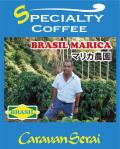 ブラジルコーヒー マリカ農園 コーヒー豆