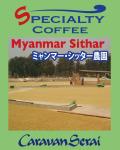 【特別販売品】ミャンマー・シッター農園