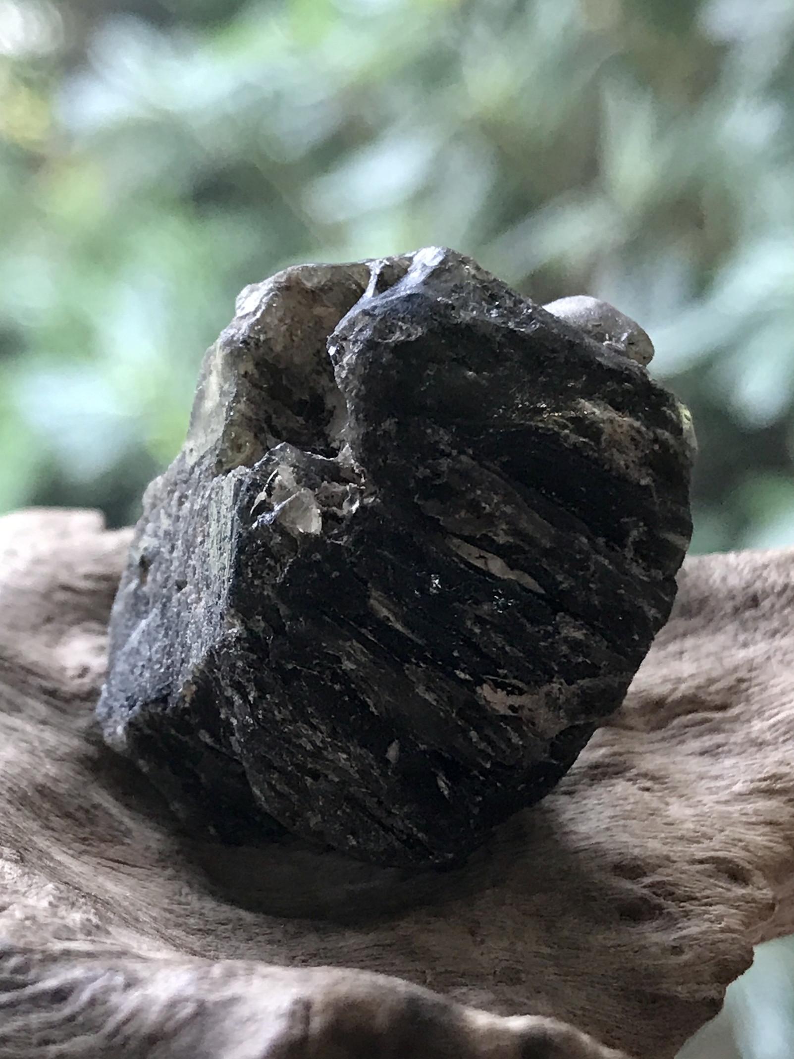 タスマニア産ダーウィングラス(隕石) DWG002