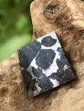 イギリス産パラサイト隕石・スラブ PLS001