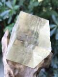 メキシコ・ナイガ鉱山 オプティカル・イエローカルサイト YCA006