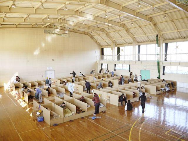 避難所用ダンボールベッド (1~9台)【受注生産 出荷までに10営業日必要/送料込み】