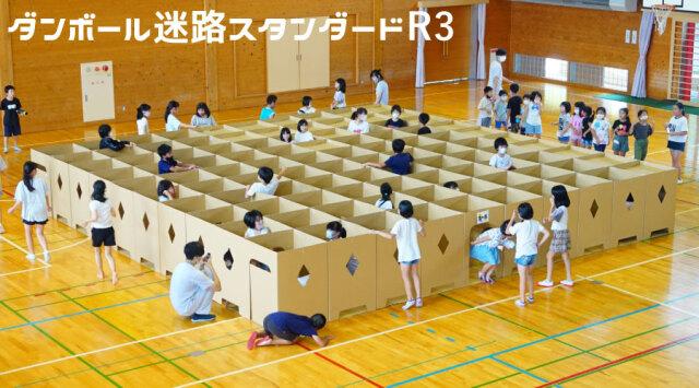 迷路スタンダードR3【送料込】