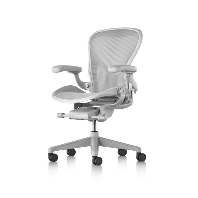 【正規販売店】Aeron Chair Remastered アーロンチェア リマスタード ポスチャーフィットSL フル装備 ミネラル/ダークミネラルベース ビニールアーム