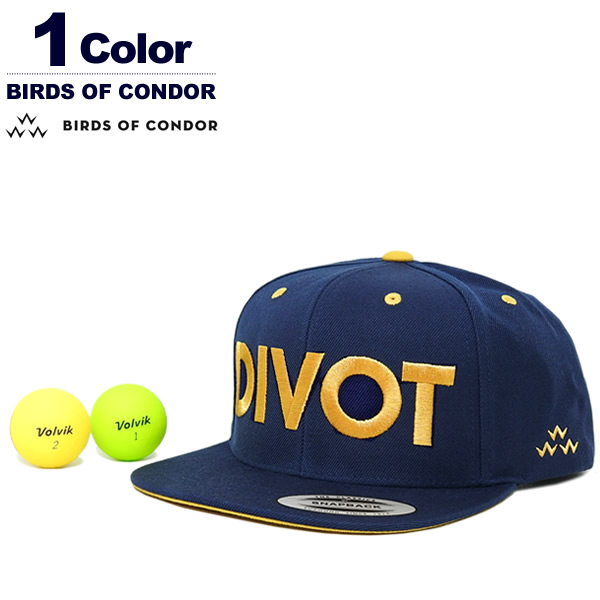 BIRDS OF CONDOR(バーズオブコンドル)キャップ