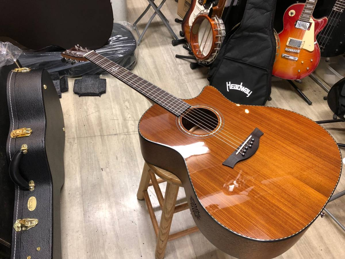 Gill Acoustic Guitar ジルアコ  マイク付! 本体調整済み