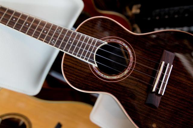 Gill UKULELE Concert ROSEWOOD オリジナル ウクレレ マイク付き ローズウッド素材 鳴りのいい単板ウクレレ コンサートサイズ