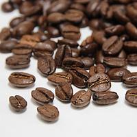 コーヒー豆ブルマンブレンド200g