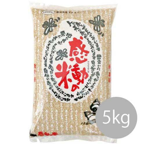 感動の米コシヒカリ玄米5kg