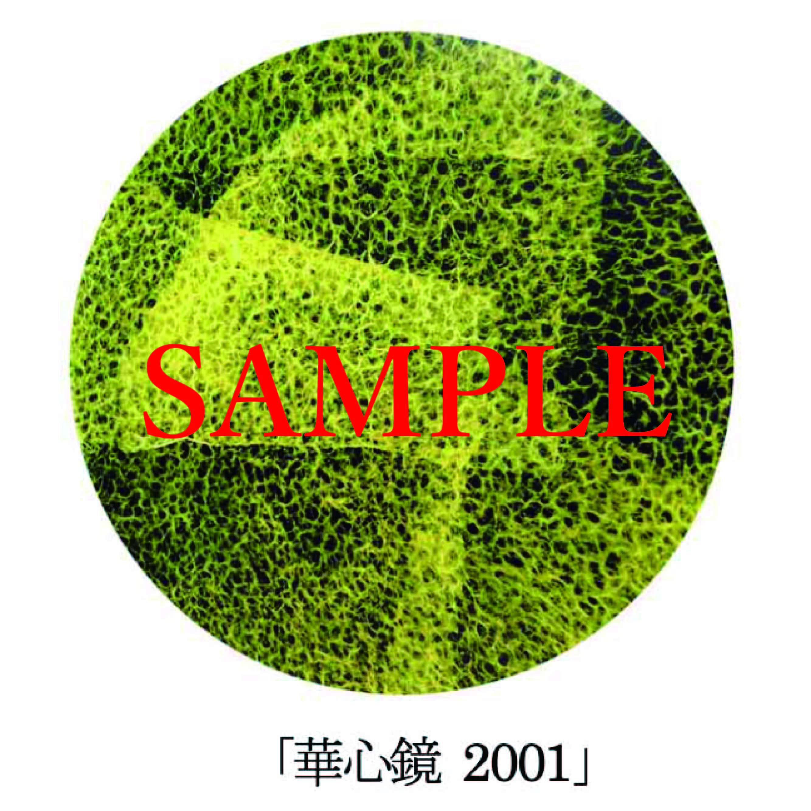 「華心鏡2001」【井坂健一郎作品華心鏡(かしんきょう)シリーズ】