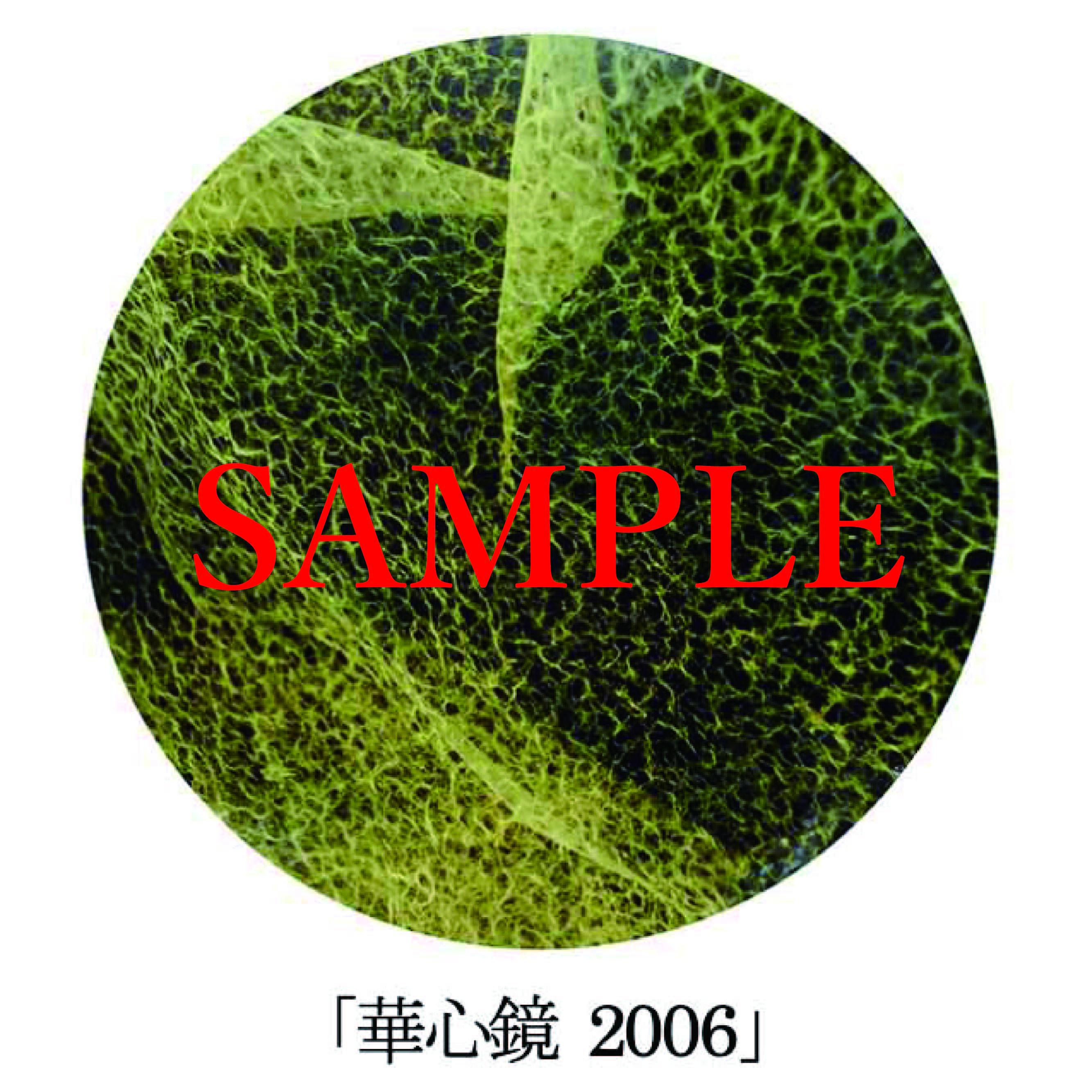 「華心鏡2006」【井坂健一郎作品華心鏡(かしんきょう)シリーズ】