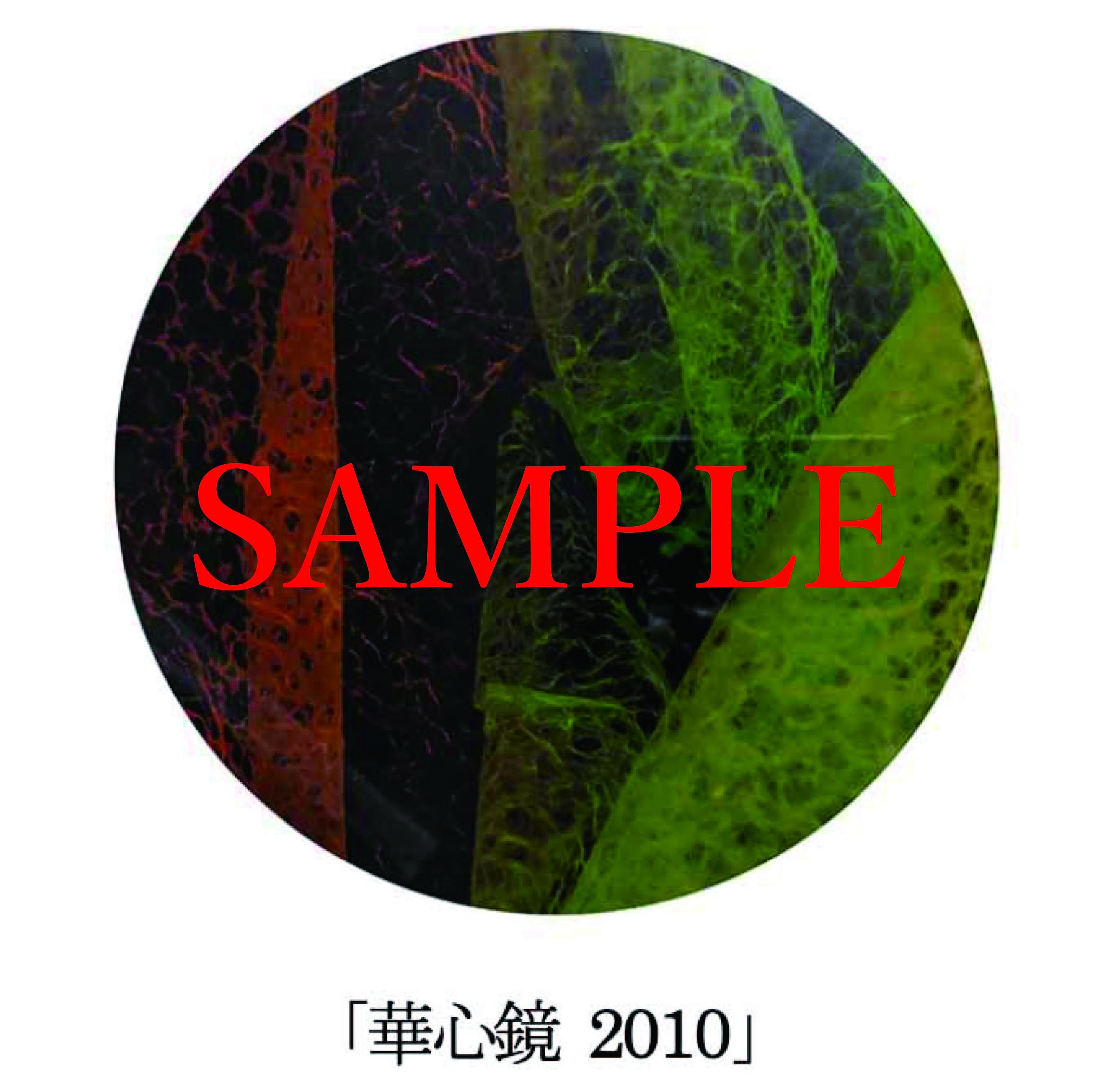 「華心鏡2010」【井坂健一郎作品華心鏡(かしんきょう)シリーズ】