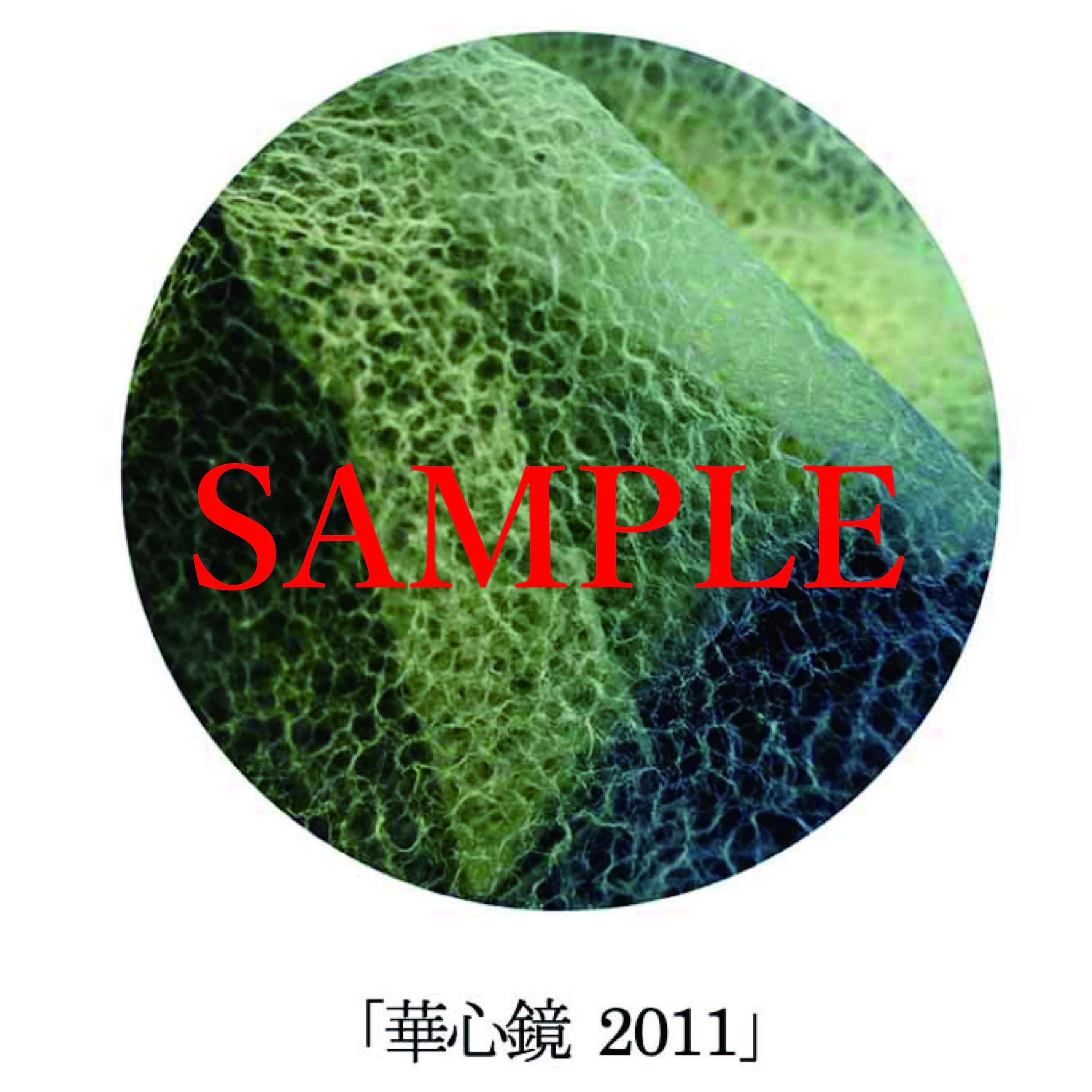 「華心鏡2011」【井坂健一郎作品華心鏡(かしんきょう)シリーズ】