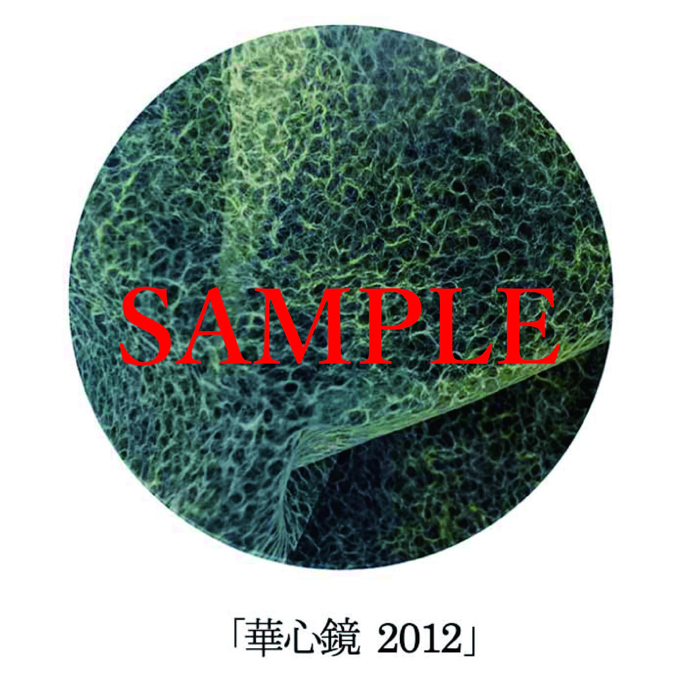 「華心鏡2012」【井坂健一郎作品華心鏡(かしんきょう)シリーズ】