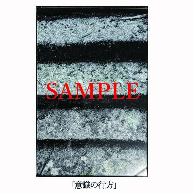 「意識の行方」【井坂健一郎作品 神社シリーズ】