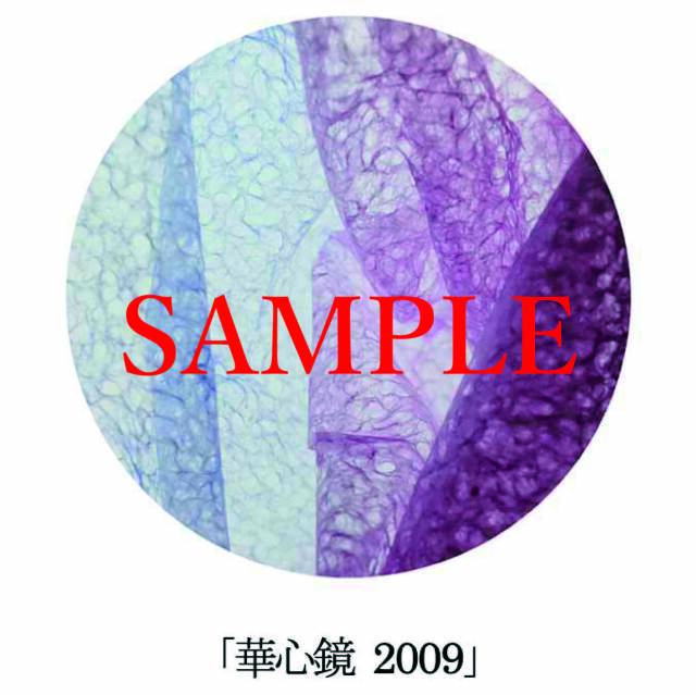「華心鏡2009」【井坂健一郎作品華心鏡(かしんきょう)シリーズ】