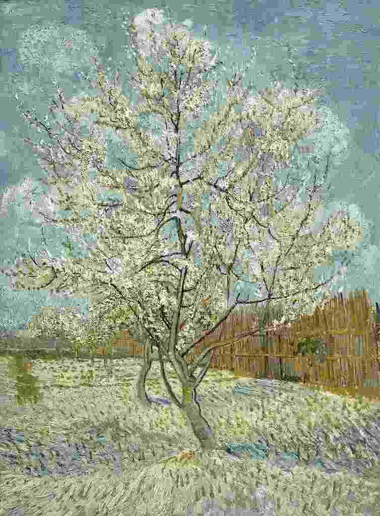 花咲くモモの木 (モーヴを思い出して)