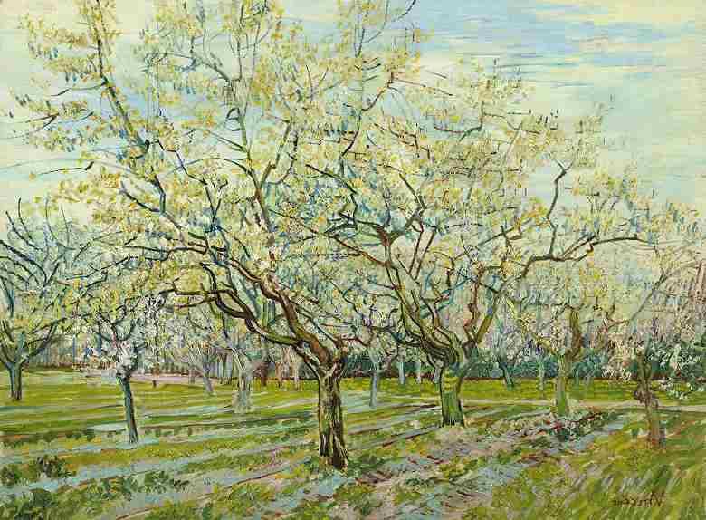 白い果樹園