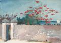 ウィンスロー・ホーマーナッソーの壁