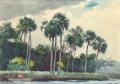 ウィンスロー・ホーマー赤いシャツ、フロリダのホモサッサ