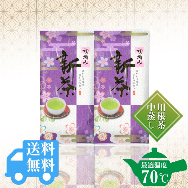 送料無料  初摘新茶100g×2袋セット / No129