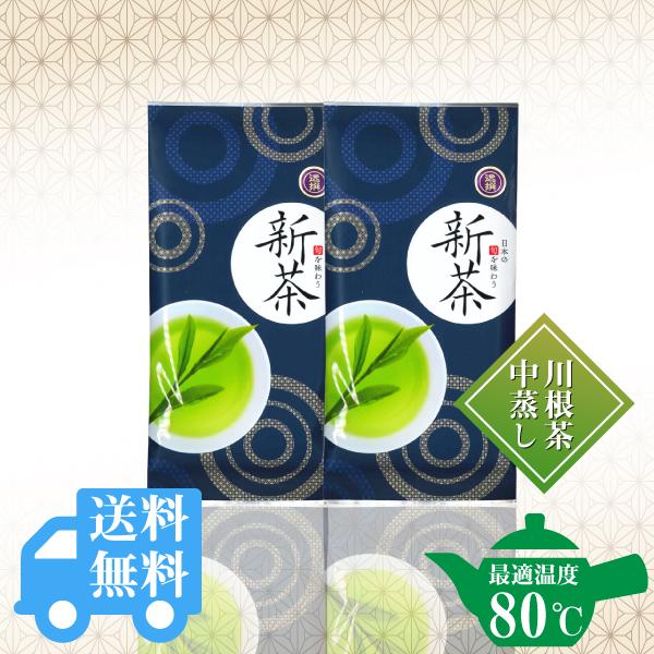 送料無料  逸撰新茶100g×2袋セット / No130