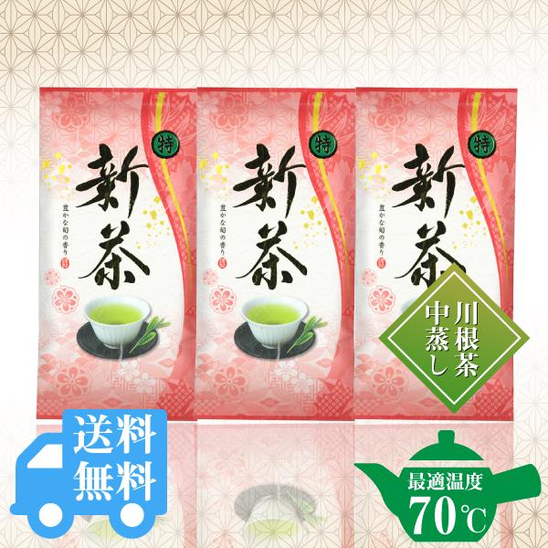 送料無料  〇特新茶100g×3袋セット / No131