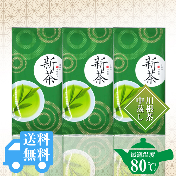 送料無料  新茶100g×3袋セット / No132