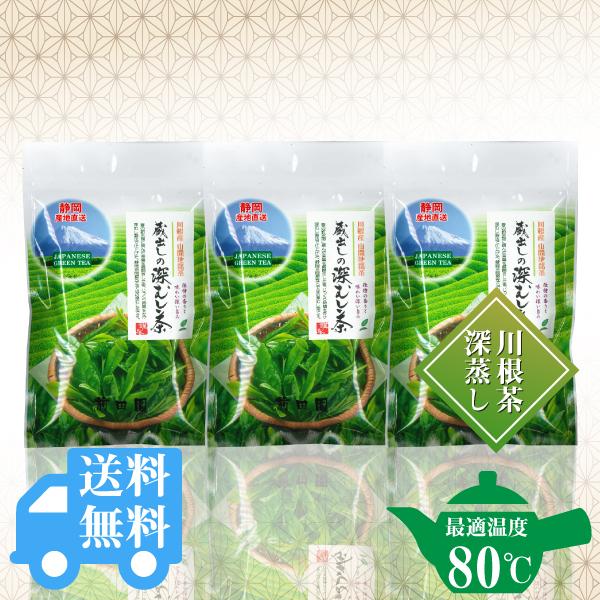送料無料  蔵出しの深むし茶200g×3袋セット / No142