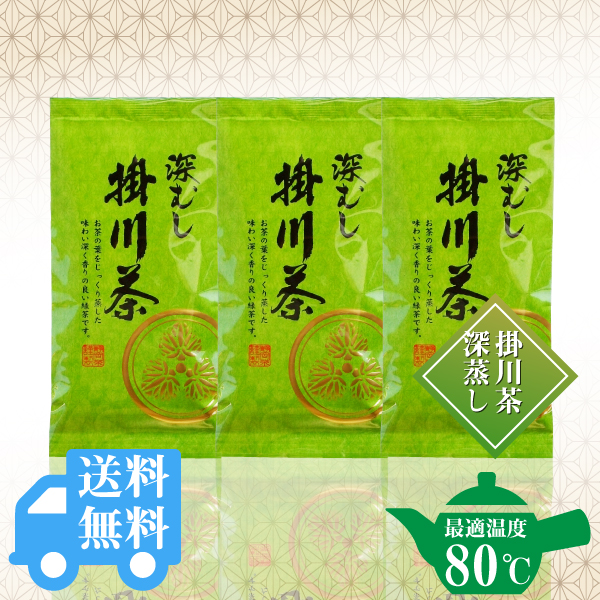 送料無料  深むし製法 掛川茶 100g×3袋セット / No143
