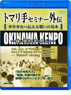 トマリ手セミナー外伝 少年少女へ伝える戦いの基本 -強い突きを手に入れる- (Blu-ray)