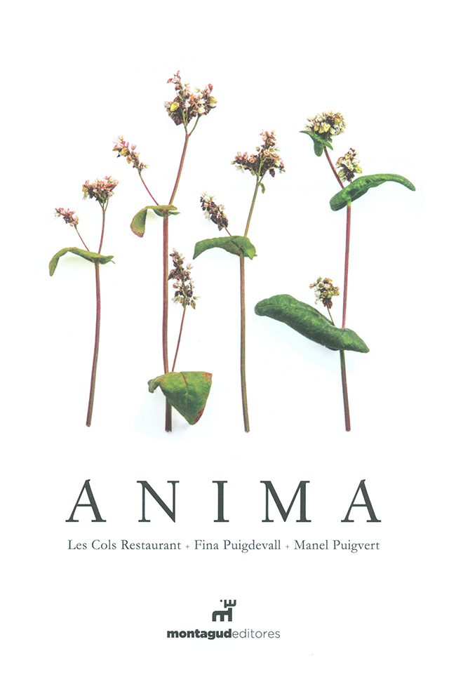 ANIMA (スペイン・オロット)