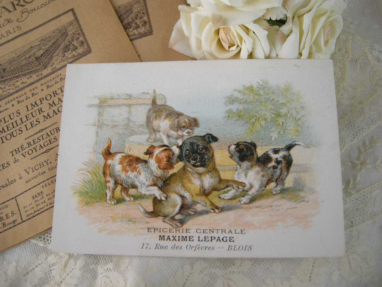フランスアンティークトレードカード(犬)