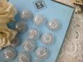 フランスプレキシクリアボタン
